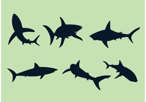 Stora vita hajvektorer vektor