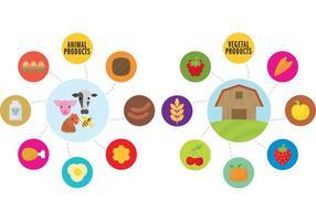 Bauernhof Infografische Vektoren