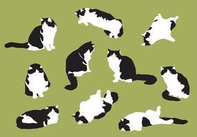 Handgezeichnete fette Katzenvektoren vektor