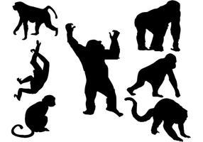 Freier Affe-Schattenbild-Vektor