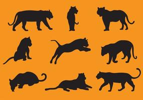 Tiger Silhouette Vektoren
