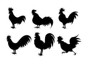 Kycklingssilhouettevektorer