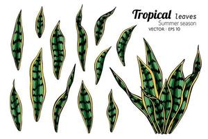 tropiska vilda löv uppsättning