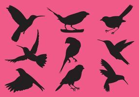 Små fågelvektorer vektor
