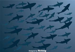 Vector Shark Silhouette Nedifrån
