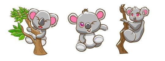 koala tecknad uppsättning