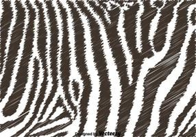 Schwarz-Weiß-Zebra-Hintergrund vektor