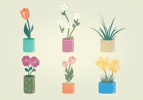 Pflanzen Vektor Grafik Set