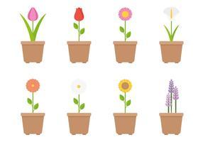 Blommvektorer vektor