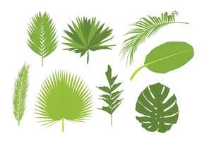 Palmblad vektorer