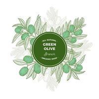 grüner runder Rahmen mit Olivenbaumzweigen vektor