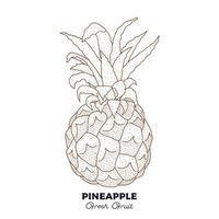 Ananas Vintage Fruchtzeichnung vektor