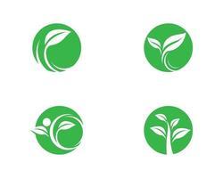 grünes Ökologielogoset vektor