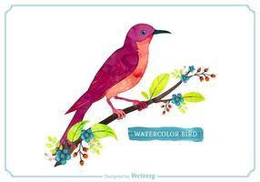 Gratis Vector vattenfärg fågel