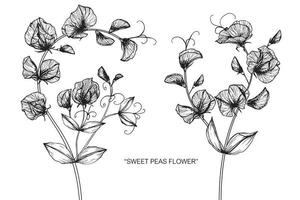 süße Erbsenblume und handgezeichnetes Blattdesign vektor