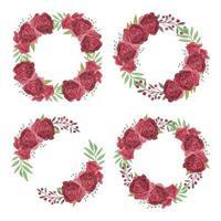 burgundy akvarell ros blomma krans samling