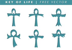 Nyckeln av livets fria vektor