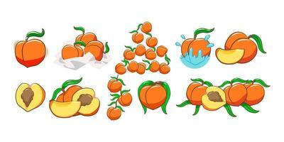 Pfirsichfruchtset vektor