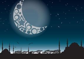 Natt i Mystic East vektor