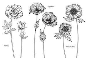 Rose, Mohn, Anemonenblüten vektor