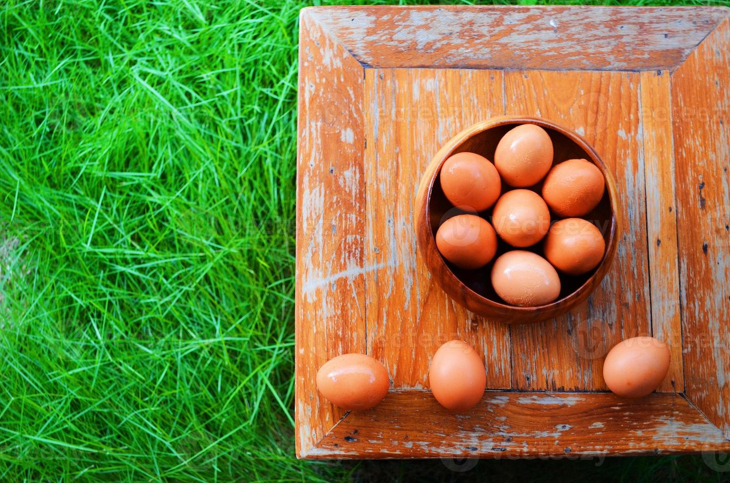 des œufs photo