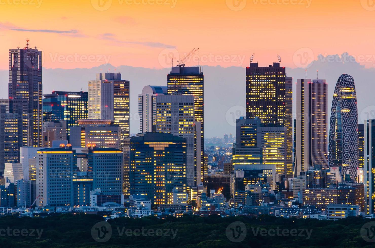belle silhouette de tokyo skyline au crépuscule photo