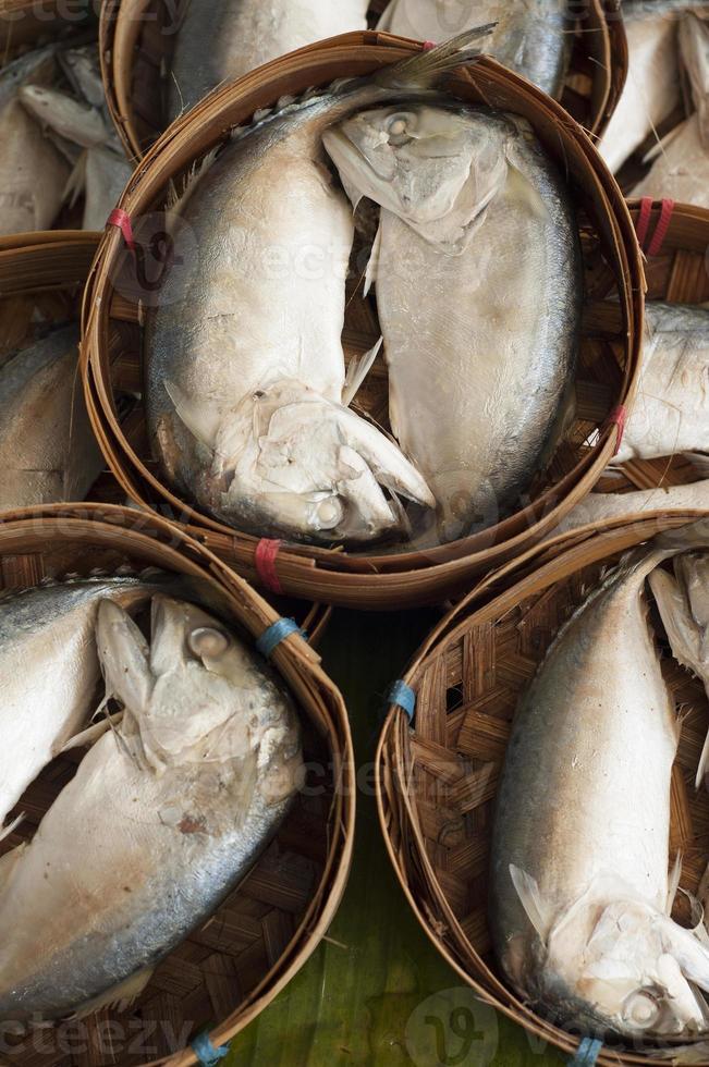 maquereau au marché de fruits de mer. photo