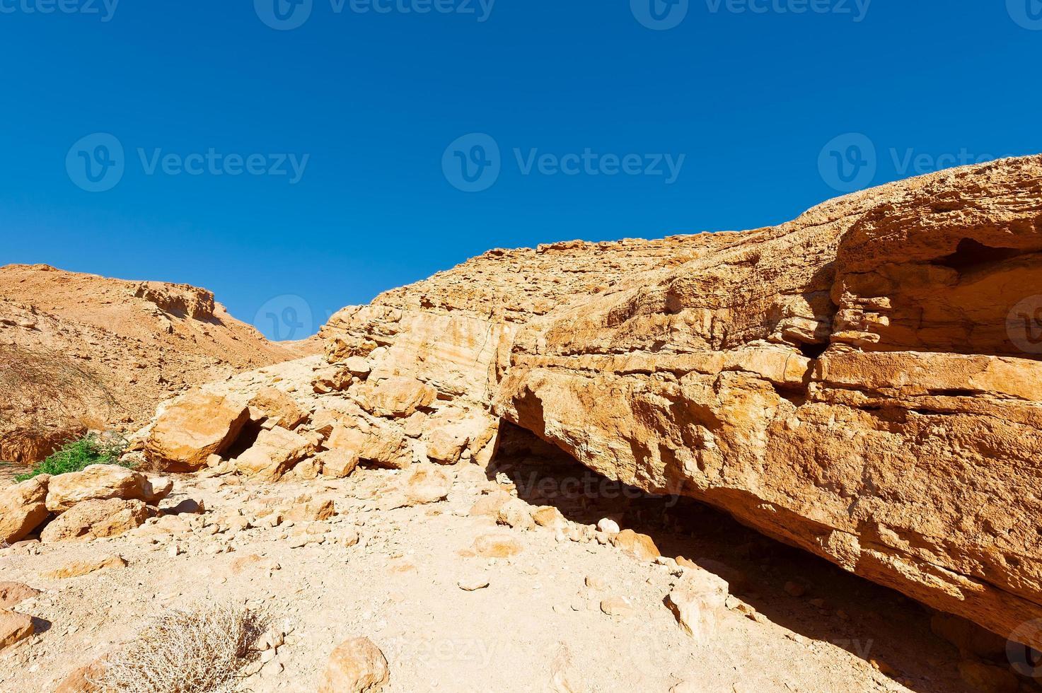 désert photo