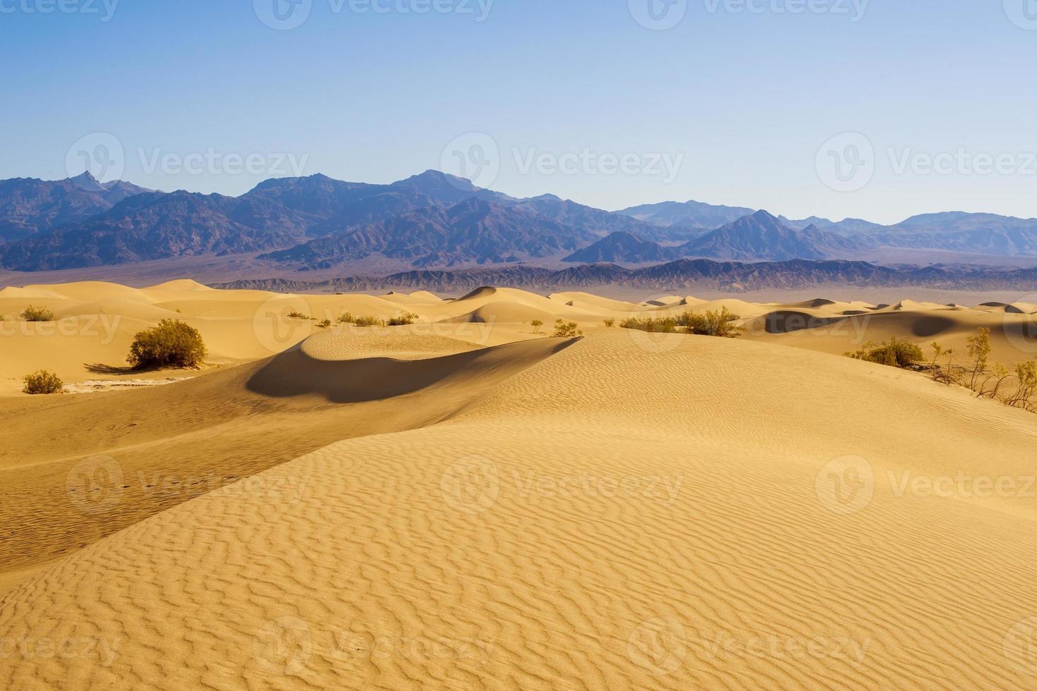 dunes de sable du désert photo