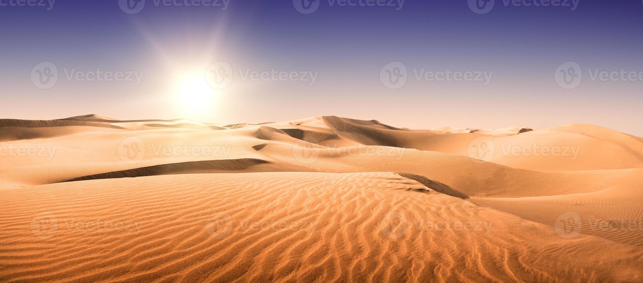 désert d'or. photo