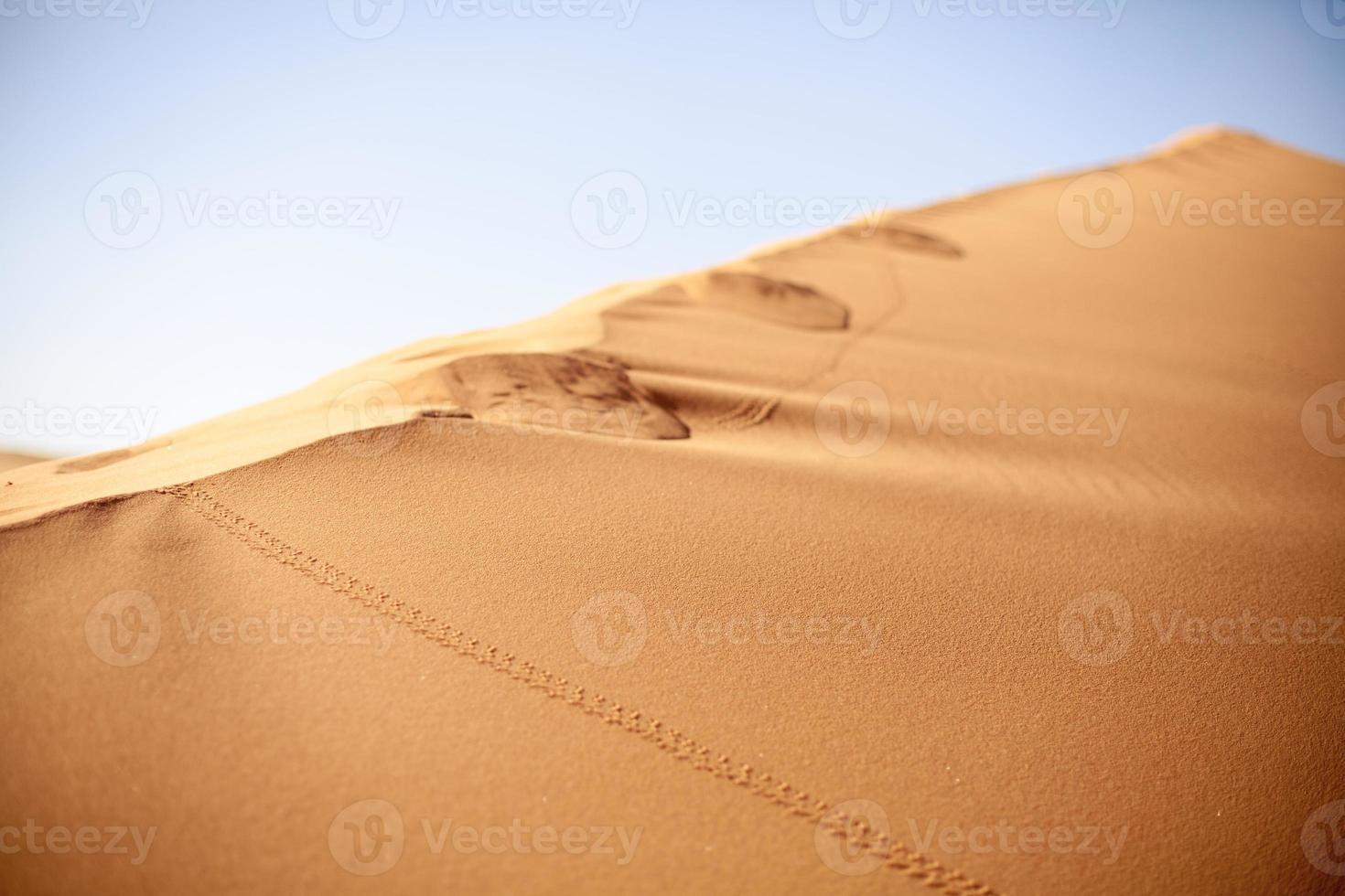terre désertique photo