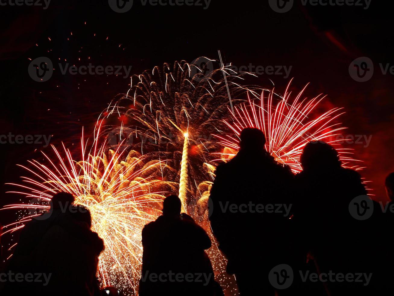 feu d'artifice battersea 2010 photo