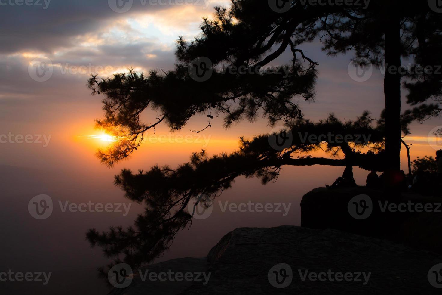 point de vue le plus beau, phu kradueng. photo