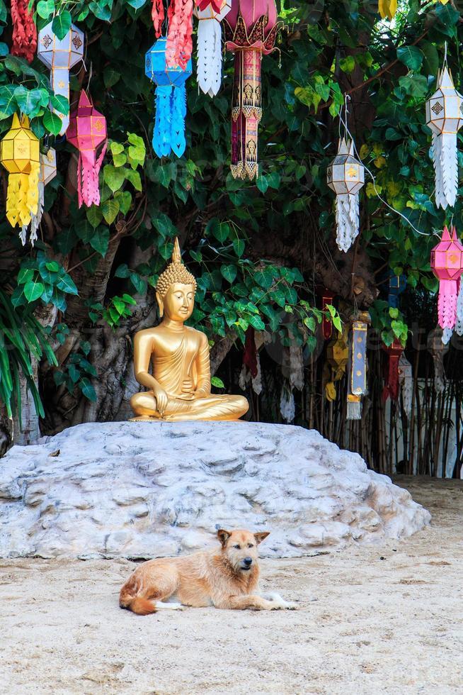 Bouddha d'or au temple wat phan tao chiang mai thaïlande photo