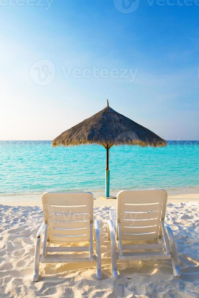 parasol et chaises longues, maldives photo