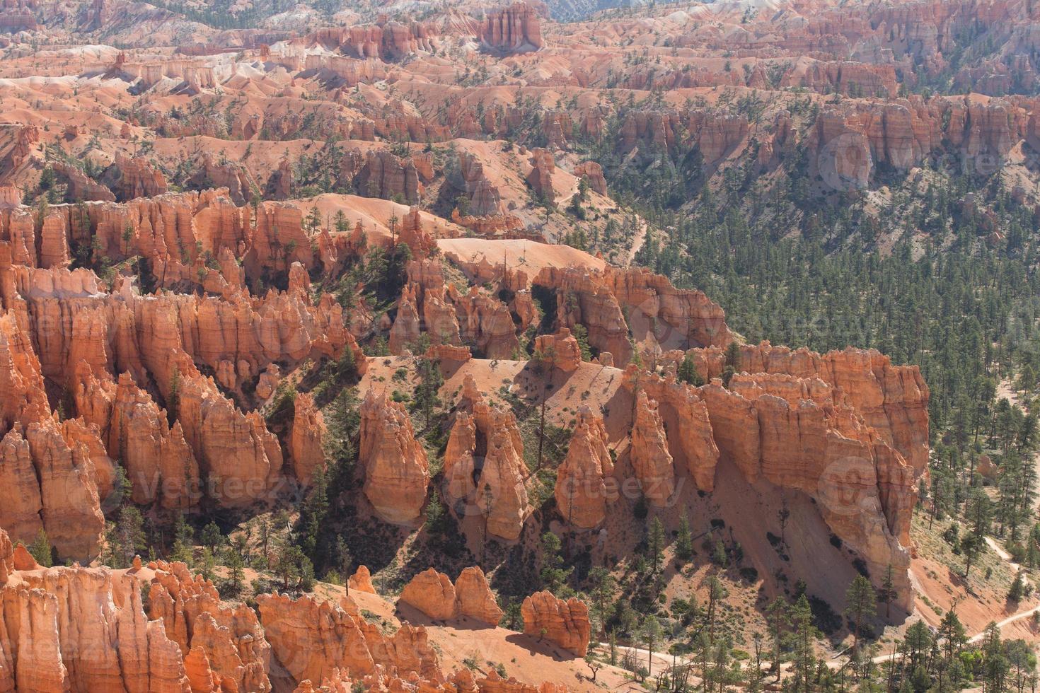 scène de paysage du parc national de bryce photo