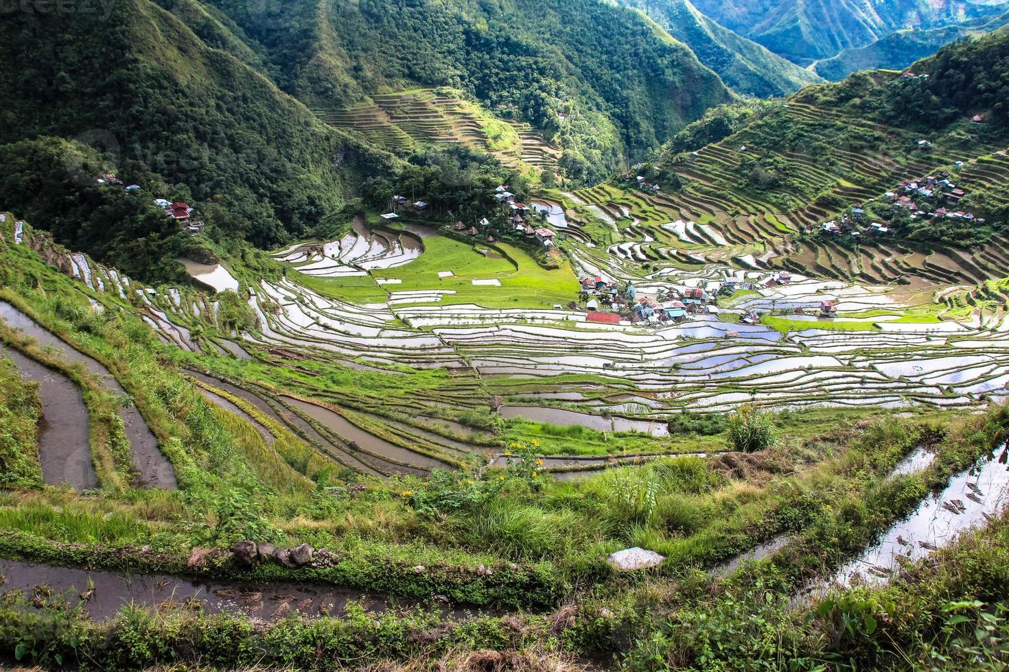 rizières en terrasses de banaue, batad, philippines photo