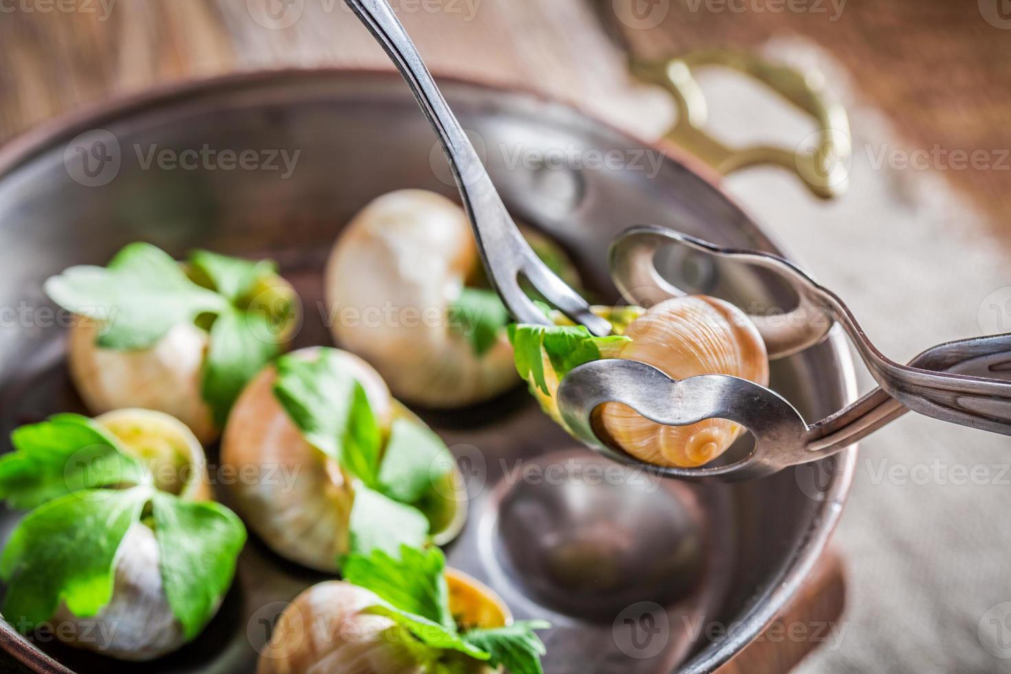 manger des escargots rôtis photo