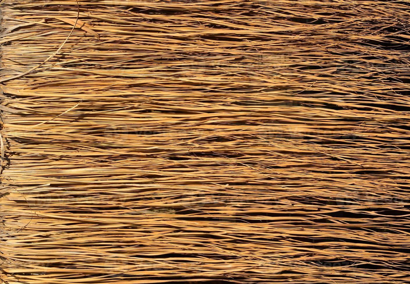 surface d'herbe sèche jaune photo