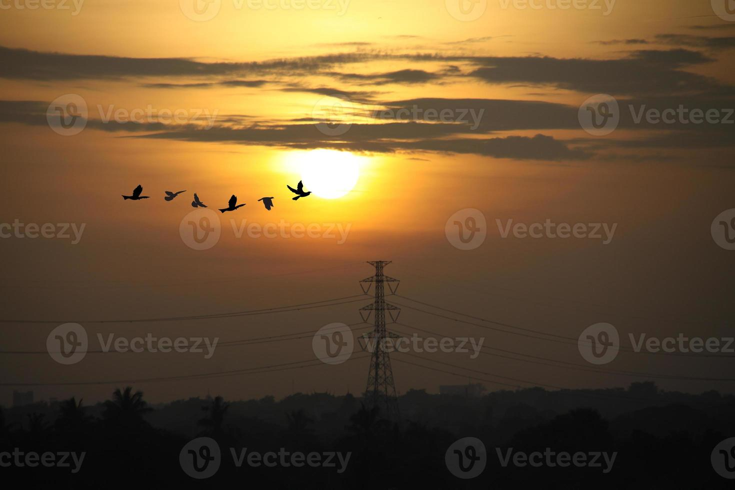 lever du soleil avec des poteaux haute tension photo