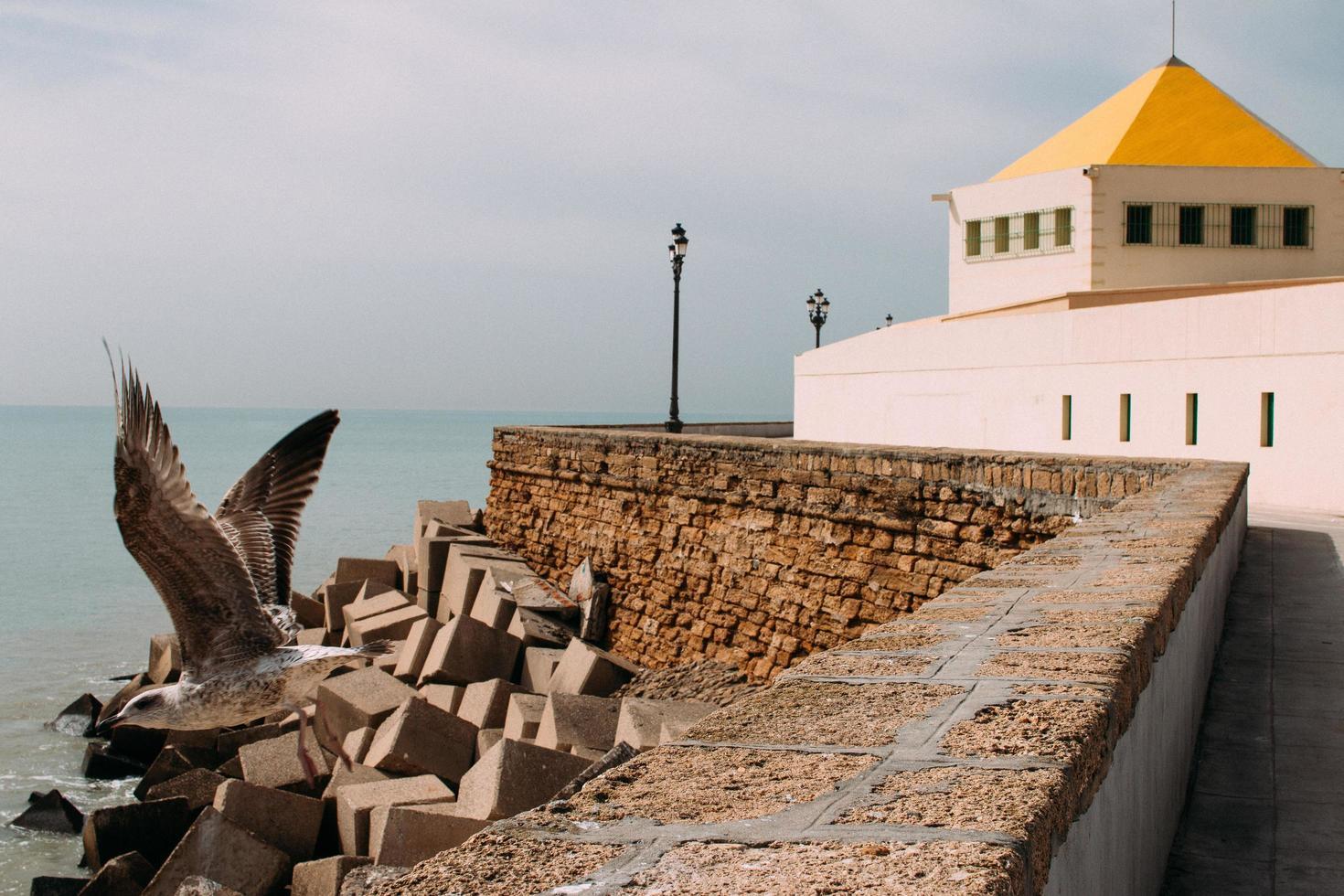bâtiment à côté de la mer photo