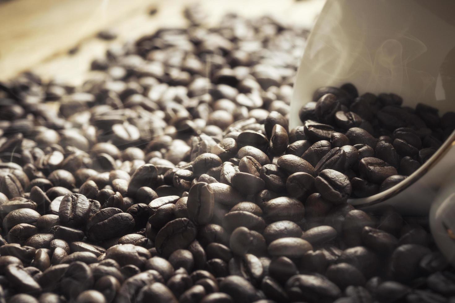 grains de café dans une tasse sur un fond ensoleillé photo