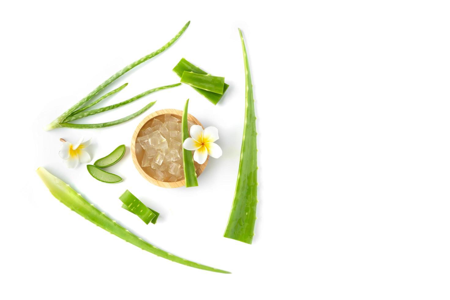 aloe vera et fleurs sur fond blanc photo
