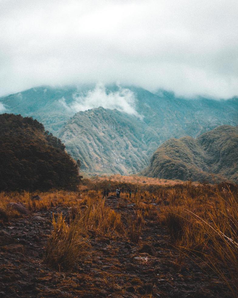 brouillard de montagne nuageux photo