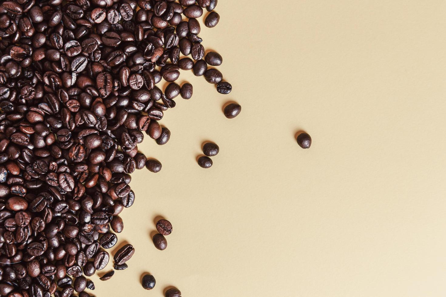 Grains de café torréfiés sur fond uni photo