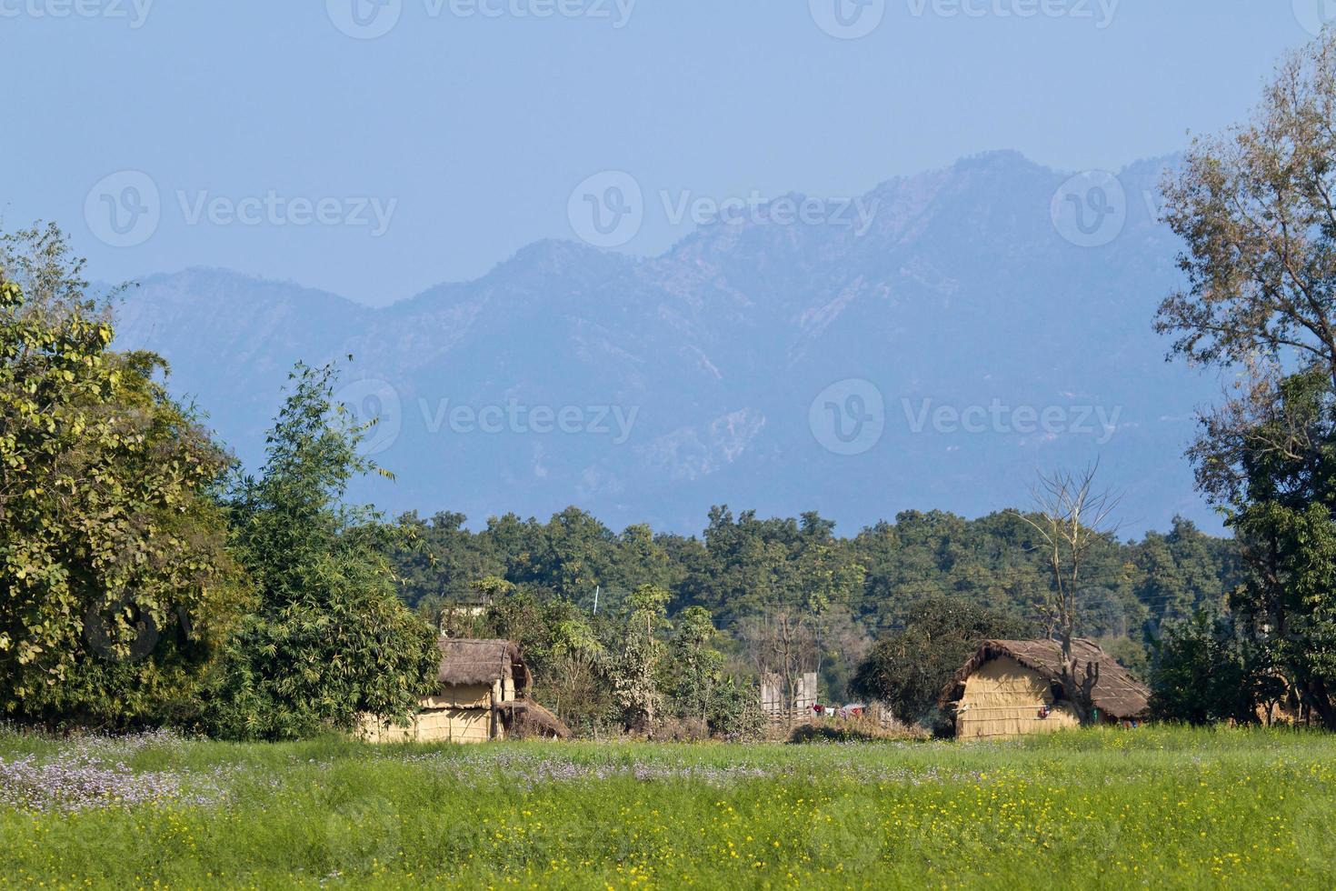 Région éloignée de Terai, Bardia, Népal photo
