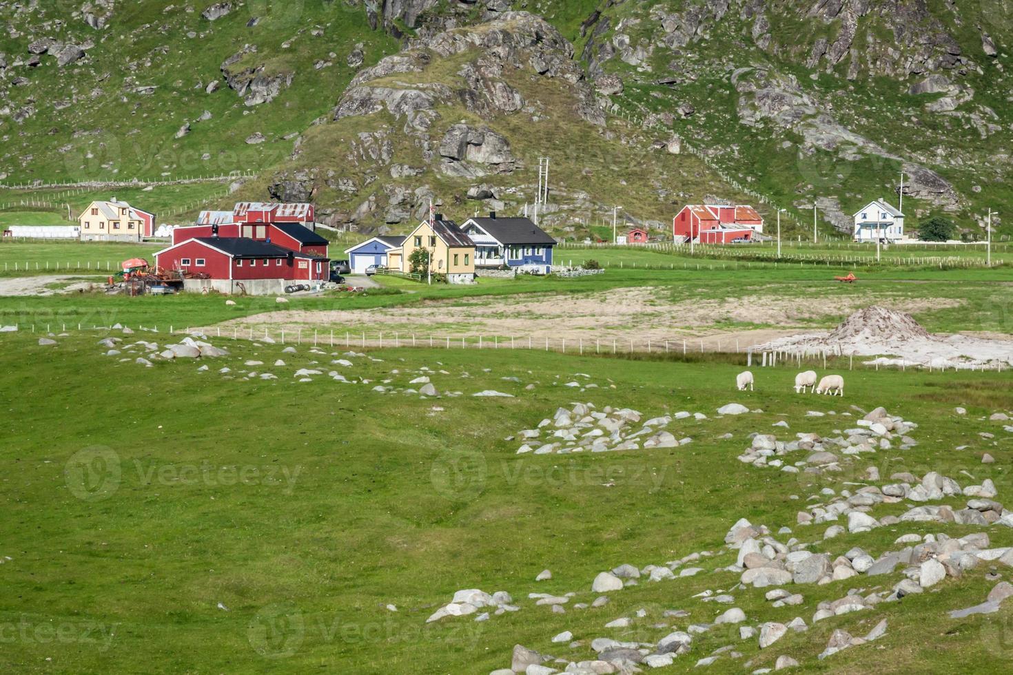 Maisons colorées traditionnelles norvégiennes, îles Lofoten, Norvège photo