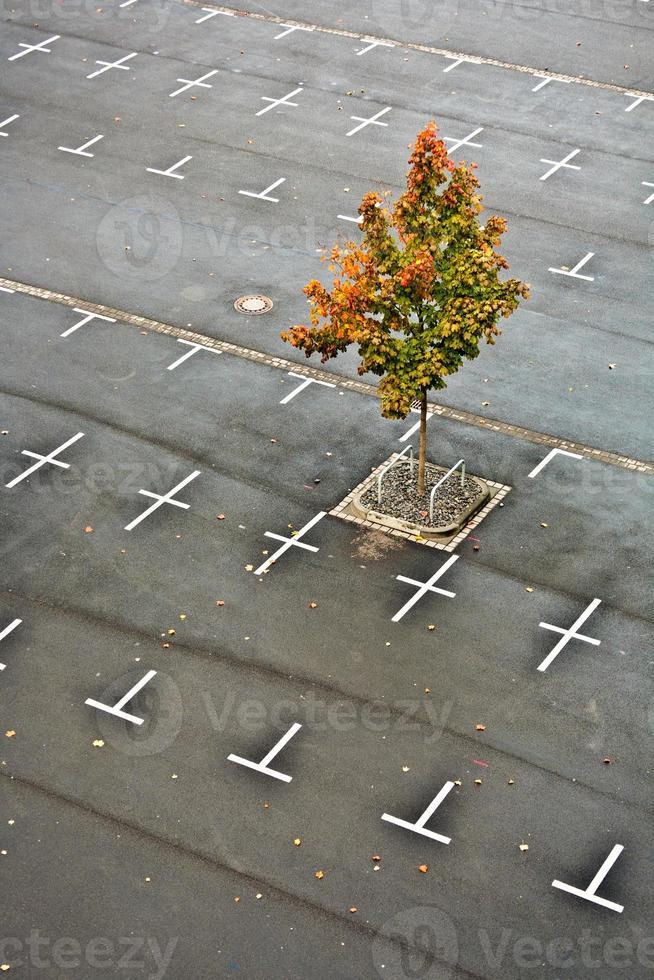 parking marqué sans voitures photo