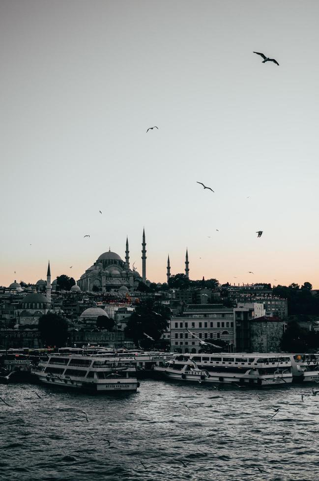 oiseaux et navires à quai au coucher du soleil photo