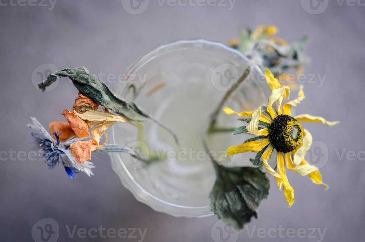 Fleurs mortes sèches dans un vase en verre photo